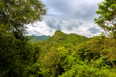 Jungle near Soroa, Candelaria Royalty Free Stock Photography