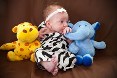Jungle Newborn Theme royalty free stock photo