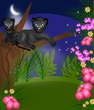 Jungle night Royalty Free Stock Images