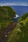 Jungle and ocean of Hawaii Royalty Free Stock Photography