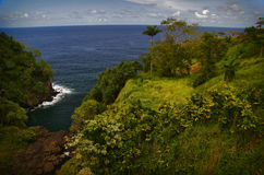Jungle and ocean of Hawaii Royalty Free Stock Photos