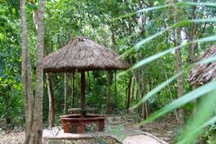 Jungle palapa hut sunroof in Mexico Mayan riviera Stock Photo