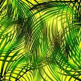 Jungle Palm Background Stock Photo