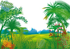 Jungle with palm trees Royalty Free Stock Image
