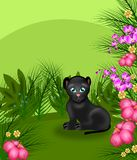 Jungle panther Stock Photography