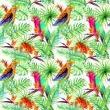 Jungle parrots, exotic plants - palm, monstera, flowers. Repeating pattern. Aquarelle Royalty Free Stock Image