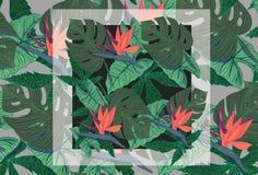 Jungle pattern. Fresh, green, bright  jungle pattern Royalty Free Stock Photos