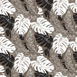 Jungle pattern with tropical leaves. Vector seamless floral pattern with various tropical leafs inspired by tropic nature and plants like palm tree and ferns in Stock Photos