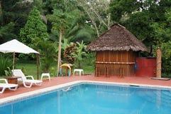 Jungle Pool Getaway. A Resort Pool in the jungle of Peru near Puerto Maldonado Royalty Free Stock Photos