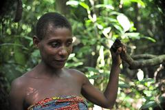 Jungle Portrait of a woman from a Baka tribe of pygmies. Royalty Free Stock Photography
