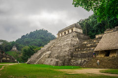 Jungle Pyramid. Pyramid in the middle of the jungle, Palenque mexico Royalty Free Stock Photo