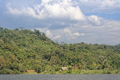 Jungle retreat Stock Photography