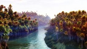 Jungle River. Dense jungle forest with sunset, bright water and thin fog layer. Super high quality and unique illustration Royalty Free Stock Photos