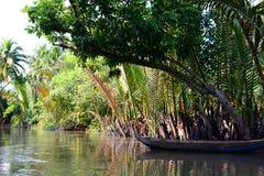 Jungle river. Ben Tre. Mekong delta region. Vietnam stock image