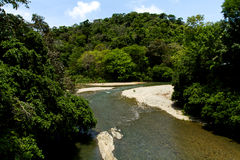 Jungle River. A river flows through the jungle in Costa Rica Stock Image