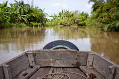 Jungle river trip Royalty Free Stock Photo