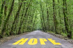 Jungle road to hope. Hope word written on jungle road with tall tree two side, green road stock photos