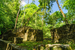 Jungle Ruins Royalty Free Stock Images