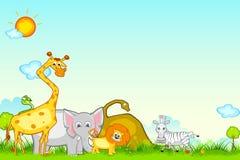 Jungle Safari. Illustration of different animal in jungle safari Royalty Free Stock Image