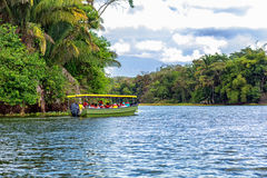Jungle Safari boat. Carring out tourists Royalty Free Stock Images