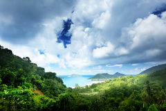 Jungle of seychelles island Royalty Free Stock Images