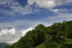 Jungle and sky of Cuba Stock Image