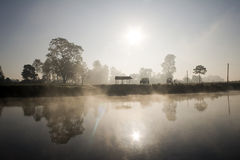 Jungle Sunrise stock photo