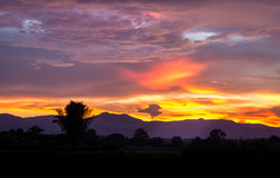 Jungle Sunset. Skies on fire as night falls on the jungles of Myanmar Royalty Free Stock Image