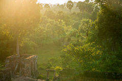 Jungle sunset Royalty Free Stock Images