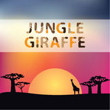 Jungle sunset with tree and giraffe silhouette Royalty Free Stock Photo
