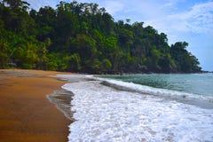 Jungle Tide. Tide coming in on the Penisula de Osa, Costa Rica Stock Photography
