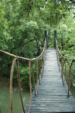 Jungle trail. A hanging bridge in Thailand royalty free stock photography