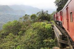 Jungle train, Brazil stock image