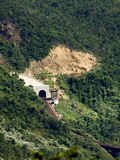 Jungle Train Tunnel Royalty Free Stock Photo