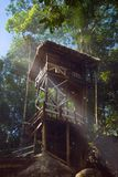 Jungle treehouse. Enchanted fairy tale jungle cabin or tree house surrounded by smoke in a tropical rainforest. Mapawa Nature Park, Mindanao, Philippines Royalty Free Stock Image