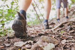 Jungle trekking, group of hikers backpackers walking together outdoors in the forest. Close up of feet, hiking shoes Stock Photo