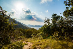 Jungle trekking on Koh Phangan Stock Photo