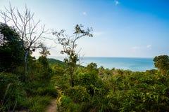 Jungle trekking on Koh Phangan Royalty Free Stock Images