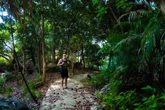 Jungle trekking on Tioman island. Young tourist having jungle trekking on tropical Tioman island in Malaysia. Beautiful nature of south east asia Royalty Free Stock Photos