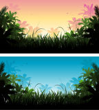 Jungle tropical background Stock Photos