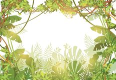 Jungle tropical background. Rainforest with tropic leaves and liana vines. Nature landscape with tropical trees. Vector. Illustration. Liana jungle green nature vector illustration