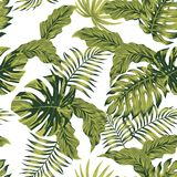 Jungle tropical leaves autumn color seamless pattern Stock Images