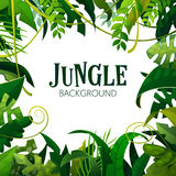 Jungle Tropical Leaves Background. Palm Trees Poster. Vector illustration royalty free illustration