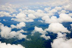 Jungle under clouds Royalty Free Stock Image