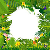 Jungle vector background with palm tree leaves Stock Photo