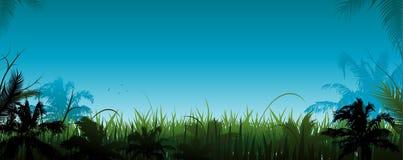 Jungle vector landscape Vector Illustration