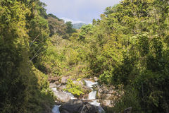Jungle View. A look through the jungle, over the river to volcan chirripo Stock Photo