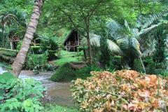 Jungle village Stock Photos