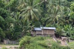 Jungle village at Mekong river, Laos