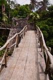 Jungle walkway Royalty Free Stock Image